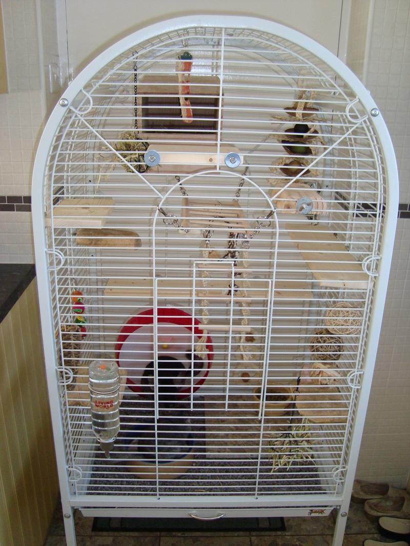 chinchilla cage - photo #26